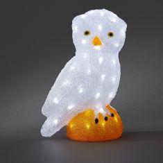 LED-Eule - Acryl - Für den Außenbereich - Inklusive 24 V Außentrafo - 32 kalt weiße LED-Dioden