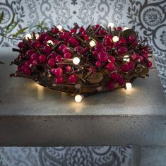 LED-Globelichterkette - 20 runde Dioden - Batteriebetrieben - Innen - 6 Farben