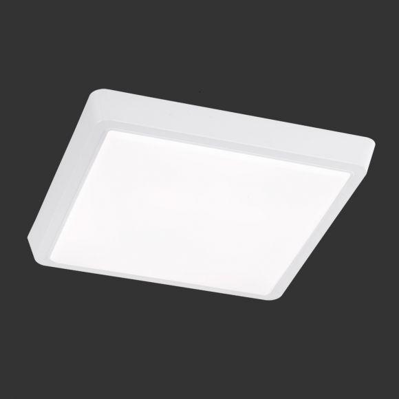 Büro- Deckenleuchte Metall und weißes Acrylglas