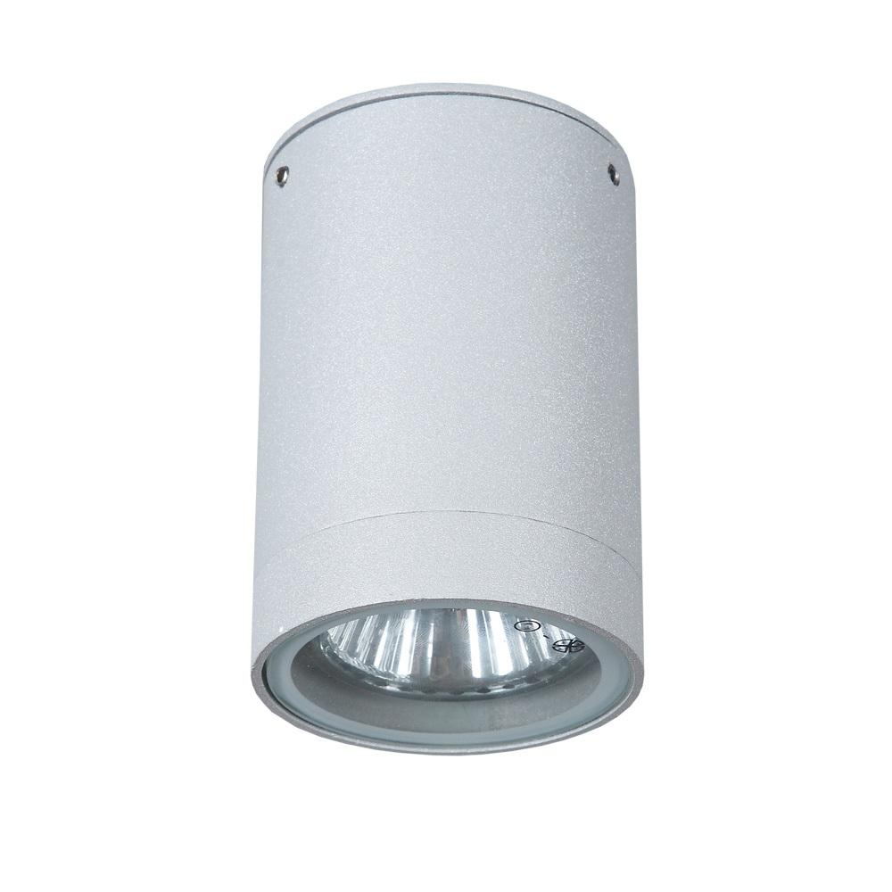 LHG Deckenleuchte Außen, Downlight, Aluminium, grau, inkl. GU10 35W