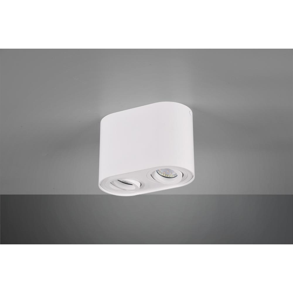 Deckenleuchte, oval, schwenkbar, 2-flammig, weiß matt