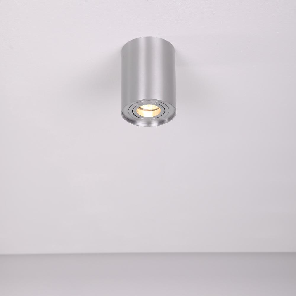 LHG Deckenleuchte, Downlight, Aluminium silber, rund, schwenkbar